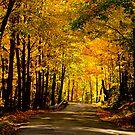West Virginia by vasu