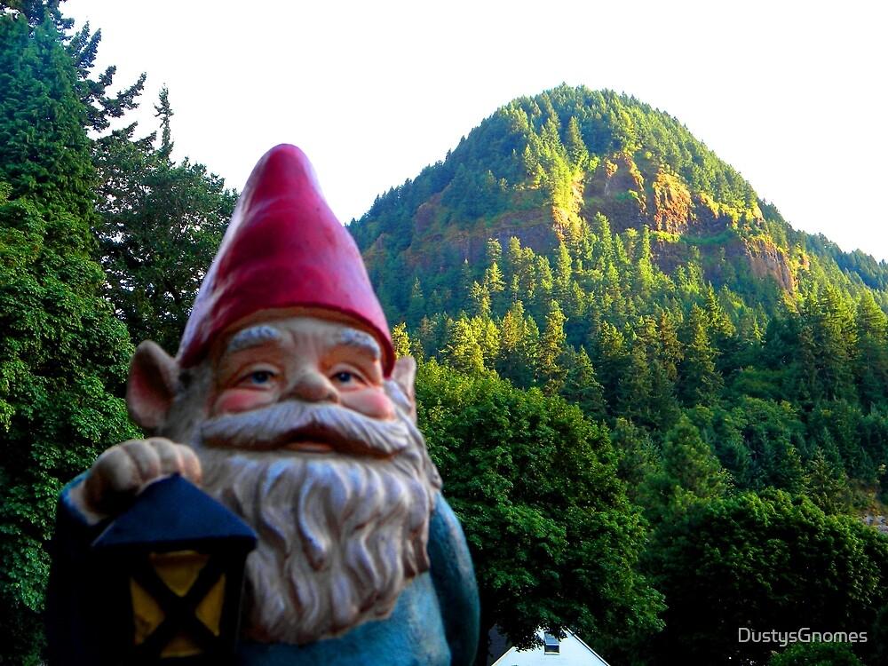 Hill Gnome by DustysGnomes