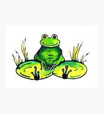 Frog - Just Chillin' Photographic Print