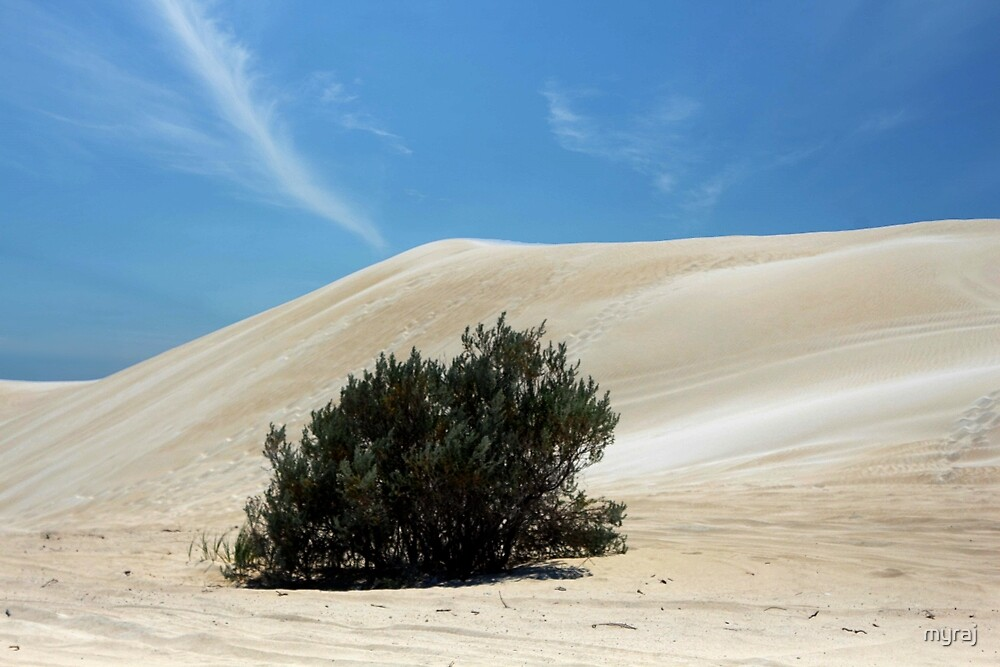 I stand alone in the desert sands by myraj