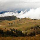 Misty Pastures  by Peter Doré
