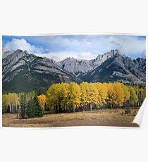 The Bow River Valley, Johnston Canyon - Banff, Alberta, Canada Poster