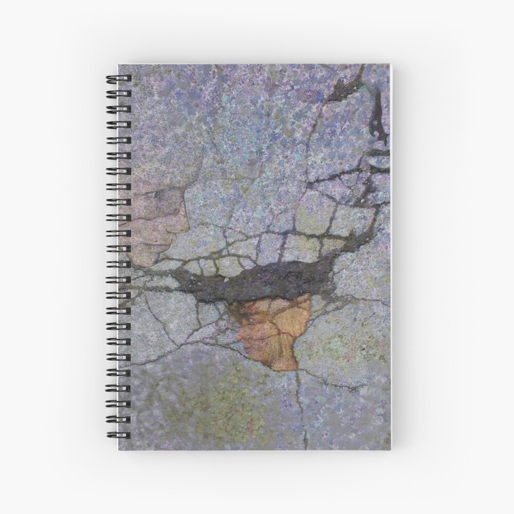Catcher of Dreams Spiral Notebook