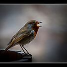 Sing a song by RAY AGIUS