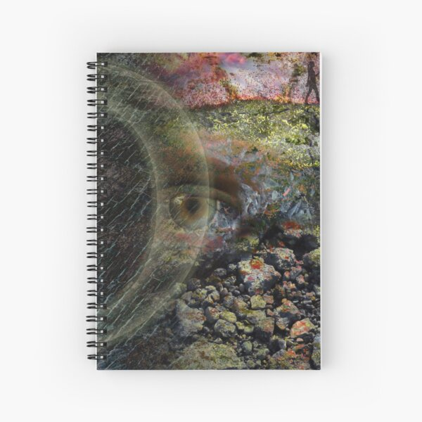 Eye of Content Spiral Notebook