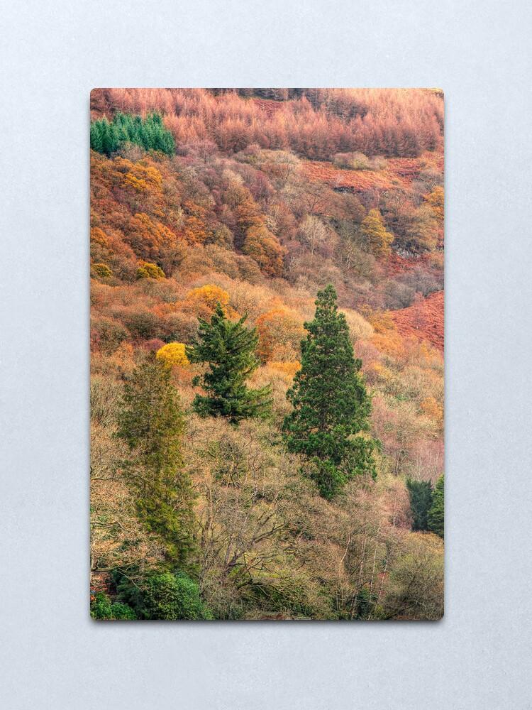 Alternate view of Ard Autumn (1) Metal Print