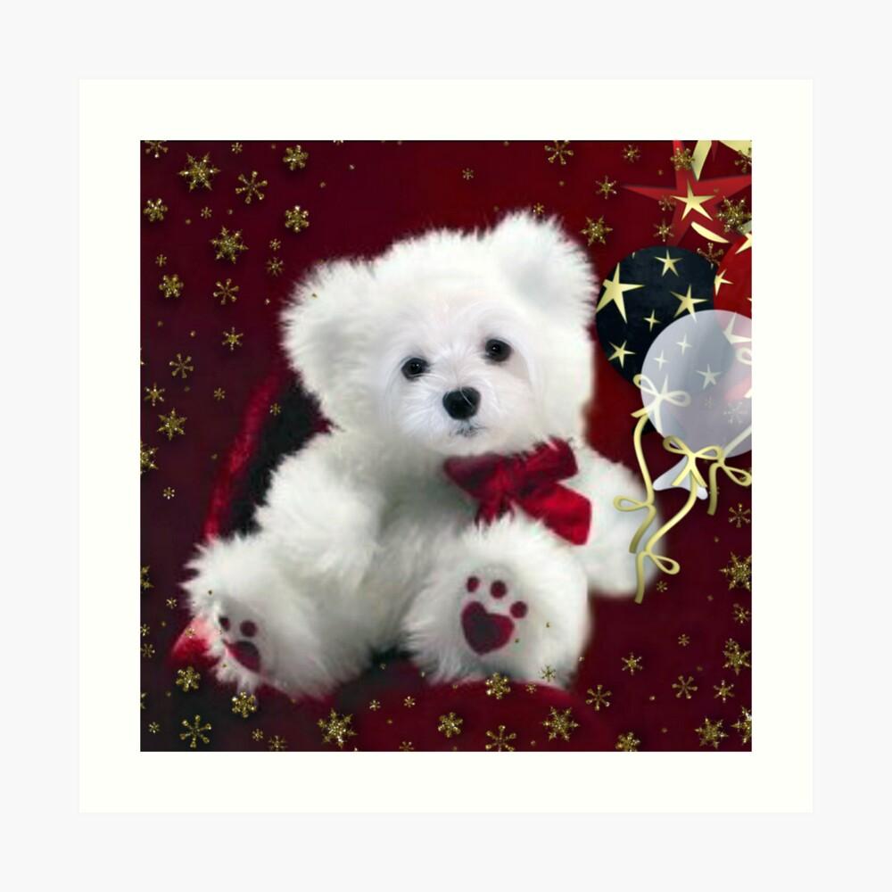 Snowdrop the Teddy Bear ! Kunstdruck