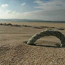 Sun, sea and...some rope? by Tibbs