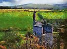 Wheal Betsy Mine, Dartmoor, Devon, UK  by David Carton