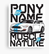 Ford Mustang GT350R Canvas Print