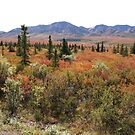 Autumn in the Tundra by Braedene