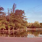 Park by Faizan Qureshi