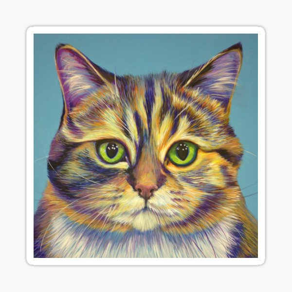 Tabby on Turquoise Sticker