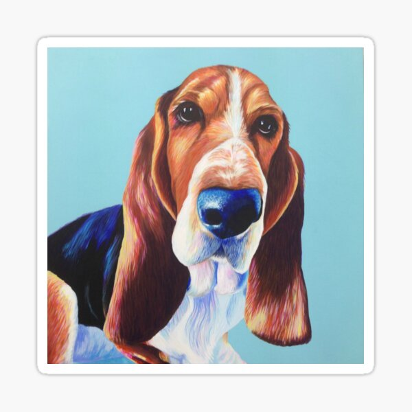 Bassett Hound on Turquoise Sticker