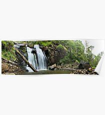 Stevenson's Falls, Otways National Park, Australia Poster