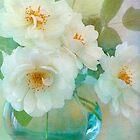blooming von Teresa Pople