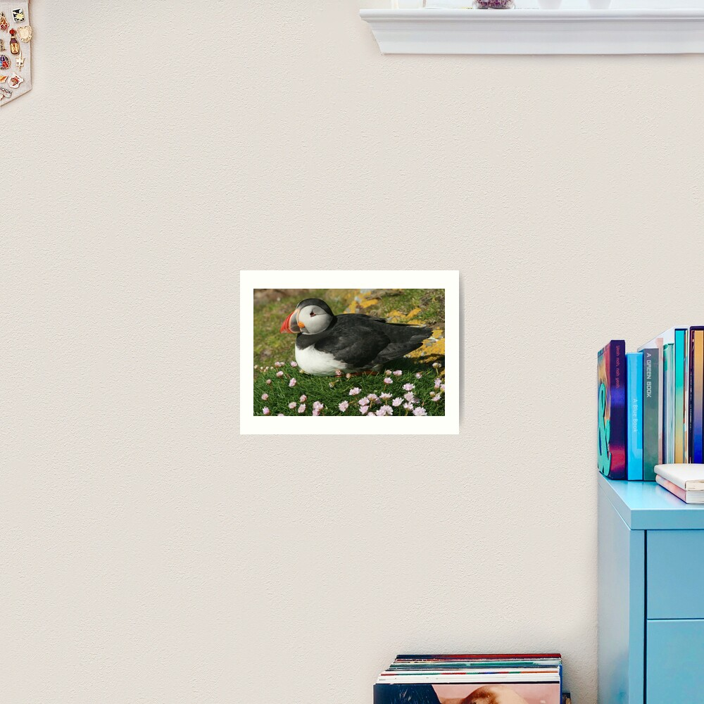 Puffin in the pinks Art Print