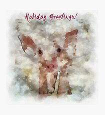 Pig in Snowstorm Photographic Print