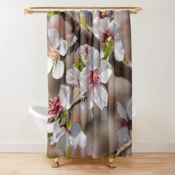 Fresh Almond Flowers - White Flowers on Peachy Background Shower Curtain