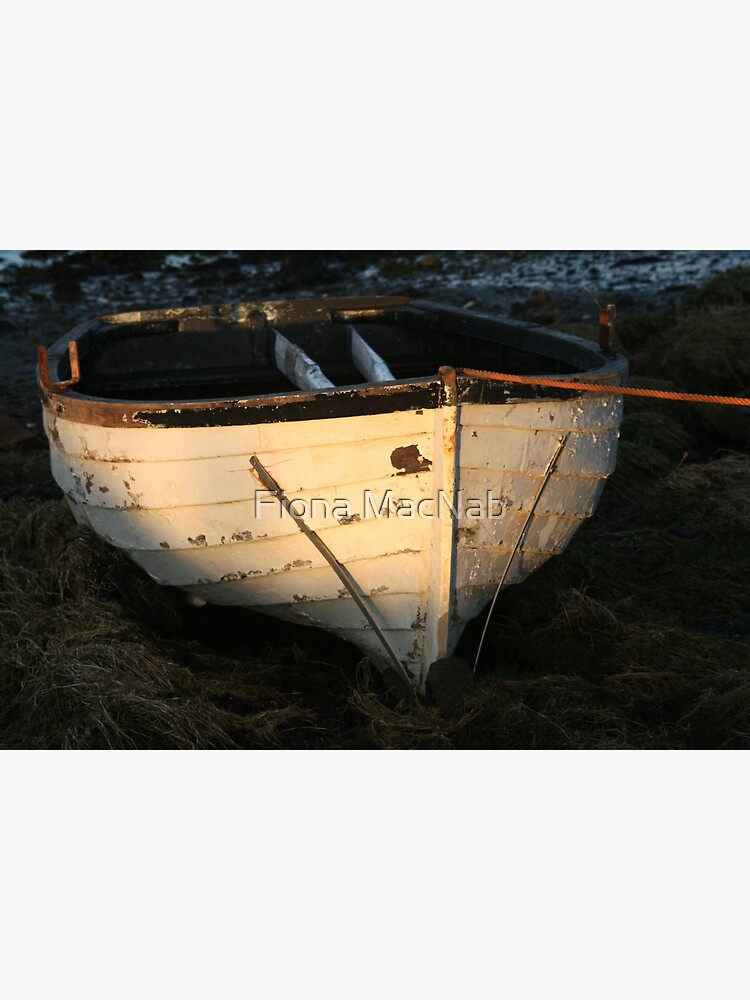 Boat by orcadia