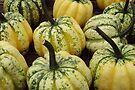 Pumpkin by Kyoko Beaumont