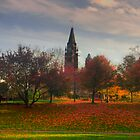 Peace Tower amongst trees - Ottawa, Ontario by Josef Pittner