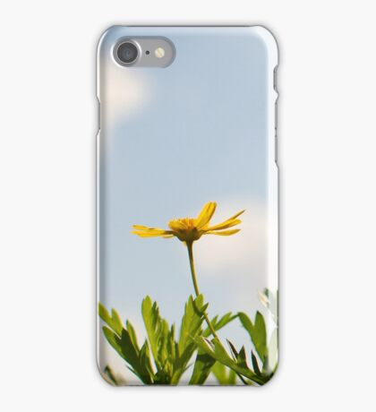 Spring - Yellow Flower iPhone Case iPhone Case/Skin