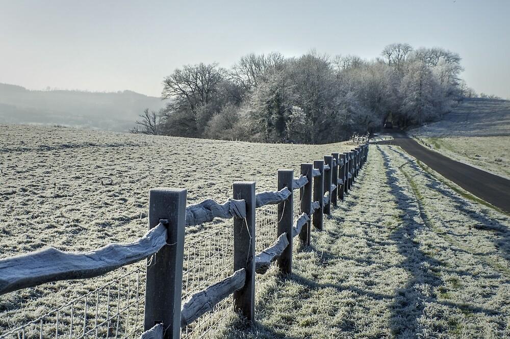 Frost by BradleyRoberts