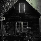 The Woodcutters House by Nikki Smith (Brown)