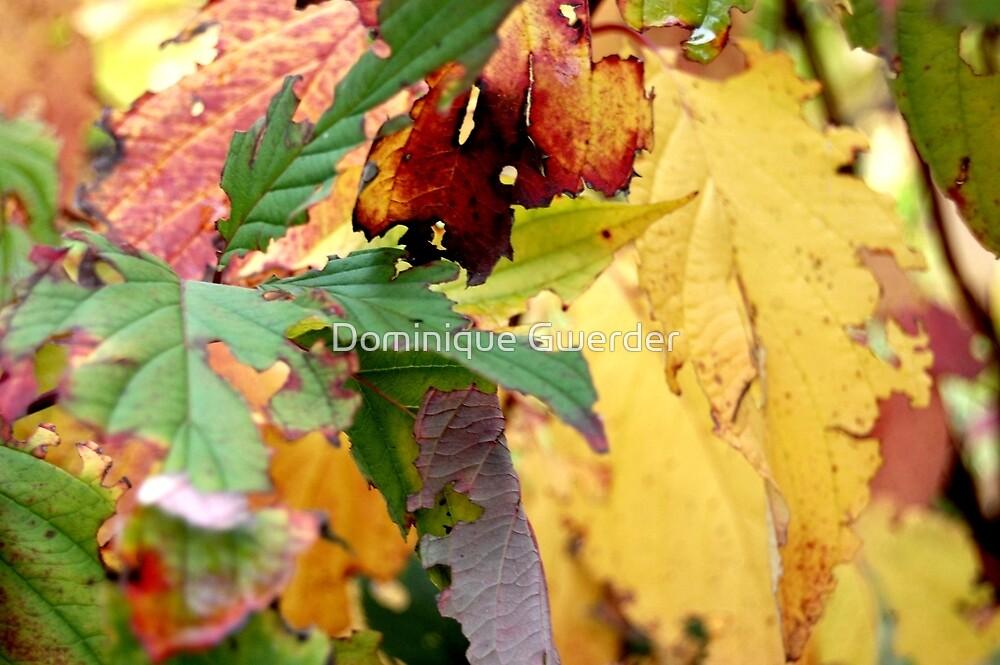 Autumn puzzle by Dominique Gwerder