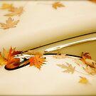 Autumn Adornment by Valerie Rosen
