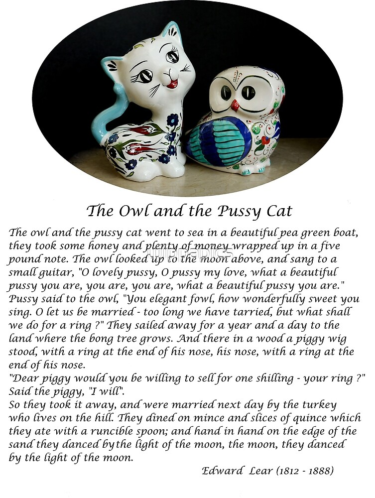 The Owl and the Pussy Cat by wippapics