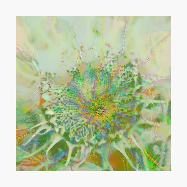 Floral abstraction Photographic Print