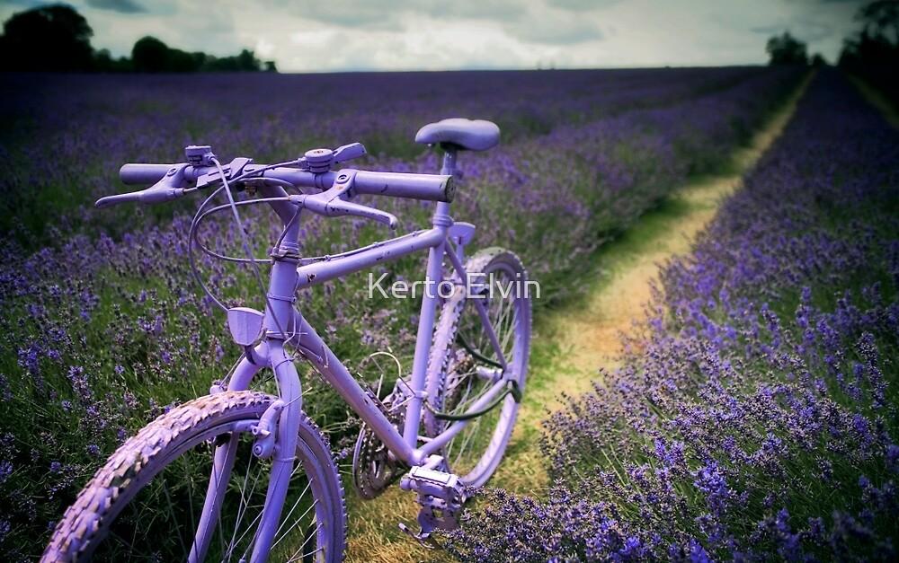 Lavender Bike by Kerto Elvin