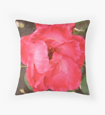 Governor Generals rose 9 Throw Pillow