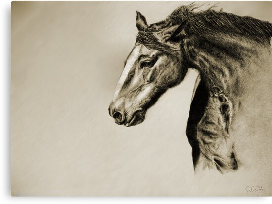 Megan's Horse by Charles Adkison