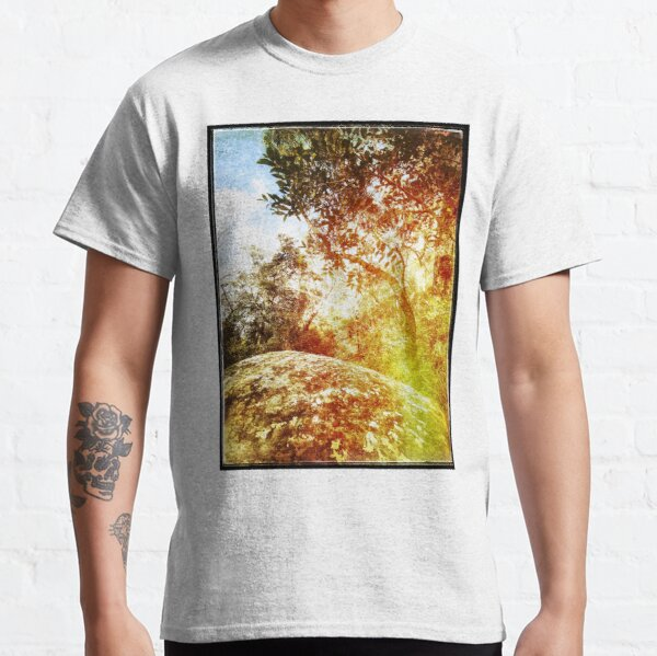 Tree and rock Classic T-Shirt