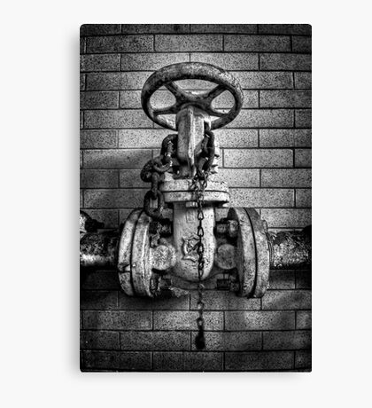 Hooked On Metal Canvas Print