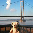 Teddy Bear Travels- Humber Bridge by weallareone