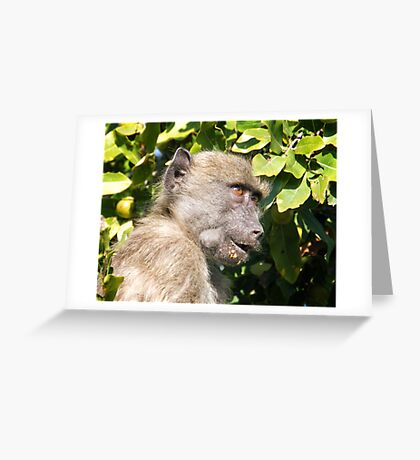 Napkin Please Greeting Card