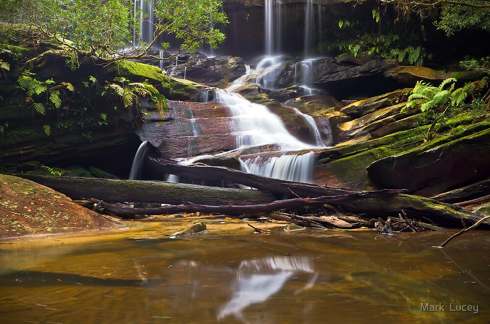 From a Trickle to a Flow by Mark  Lucey