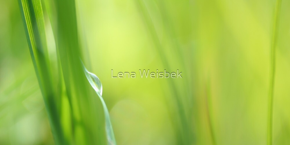 As Tears Go By.. by Lena Weiss