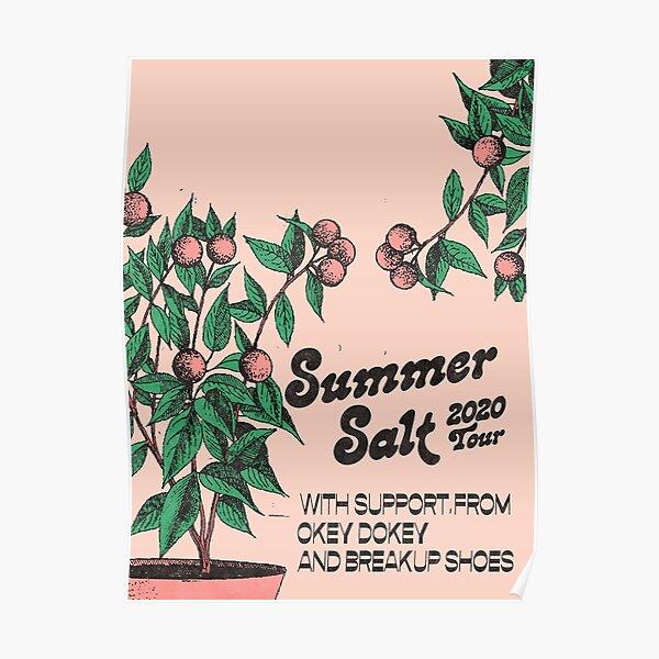 Sixsum Summer Salt American Tour 2020 Poster