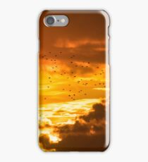 flocks of starlings flying into a sunset iPhone Case/Skin