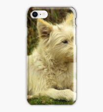 White Shaggy Dog iPhone Case/Skin