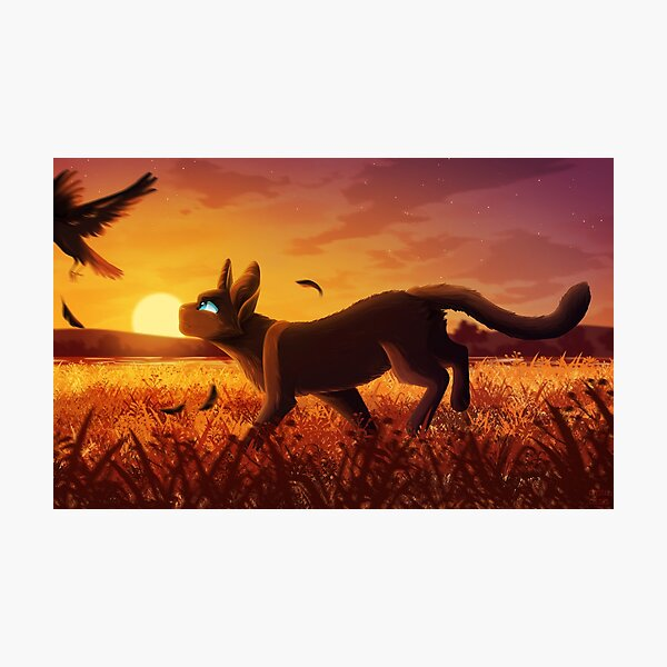 Crowfeather Of WindClan Photographic Print
