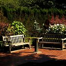 The Shakespeare Garden by artisandelimage