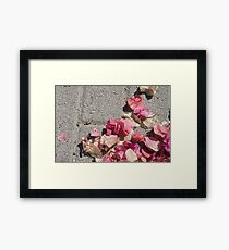 gathering of bougainville Framed Print