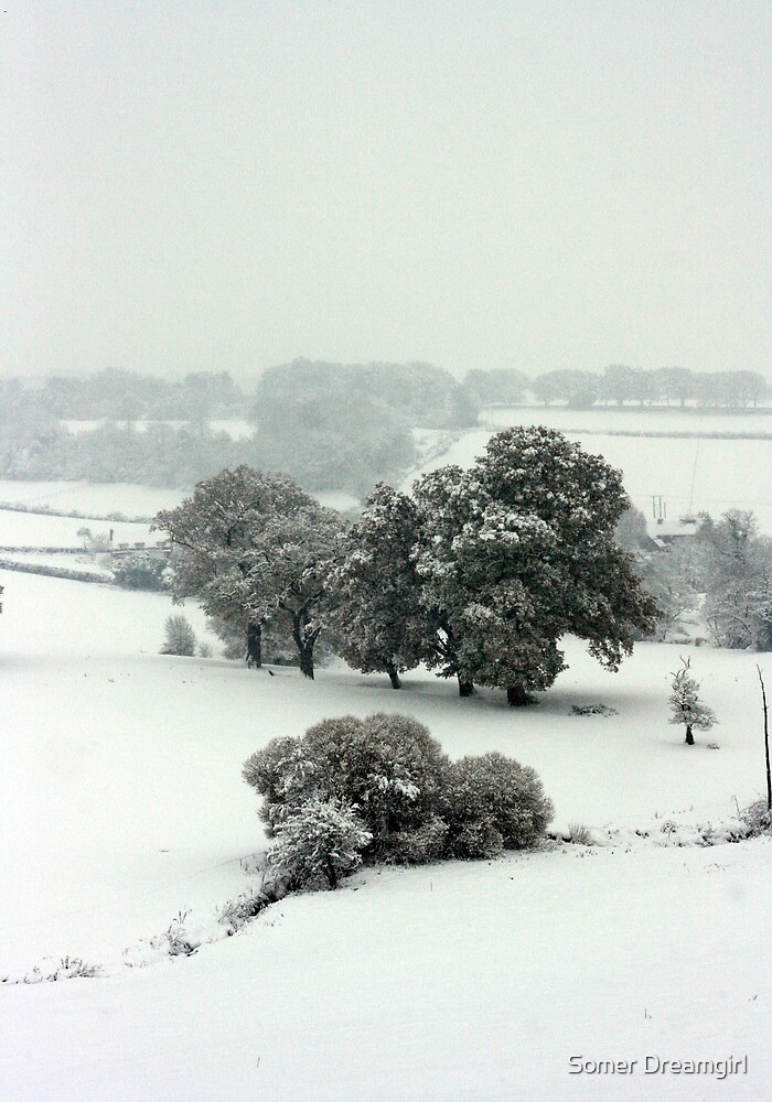 Winter in Petworth by Emma S