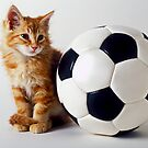 Orange and white kitten with soccer ball by Garry Gay